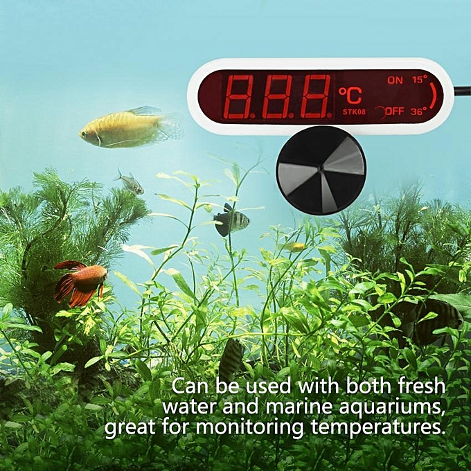 Other LED Digital Aquarium Thermometer Fish Tank Water Temperature Gauge with Suction Cup (blanc) FCJMALL à prix pas cher