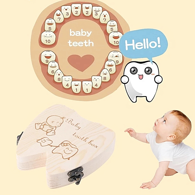 UNIVERSAL Organisateur de dents de lait pour enfants à prix pas cher