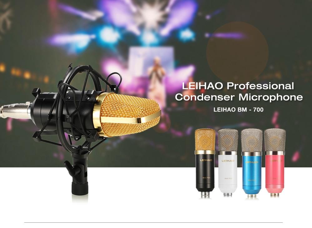 LEIHAO BM - 700 Professional Condenser Microphone Studio Broadcasting Recording