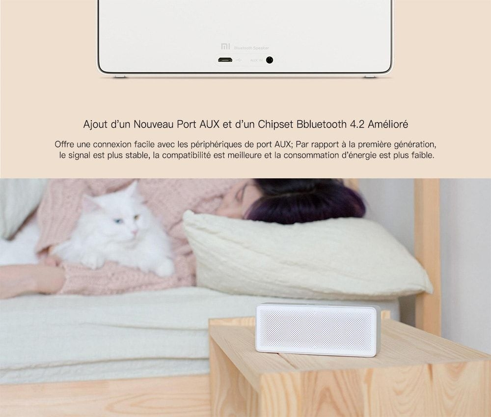 Xiaomi XMYX03YM Haut-Parleur d'Origine avec Bluetooth 4,2 - Argent