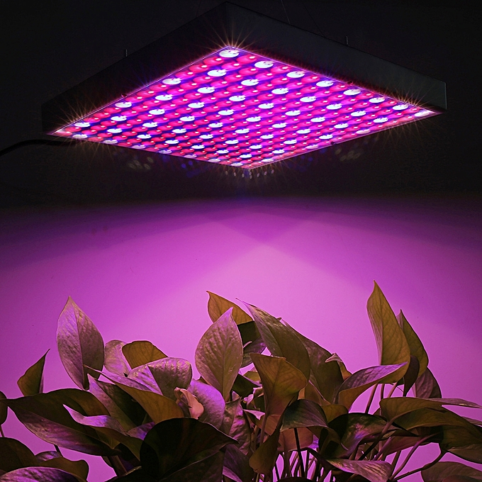 Sunsky 14W 225 LEDs SMD 3528 rouge + bleu Light LED Plant Growth Light verthouse Light Aquarium Light, AC 85-265V à prix pas cher