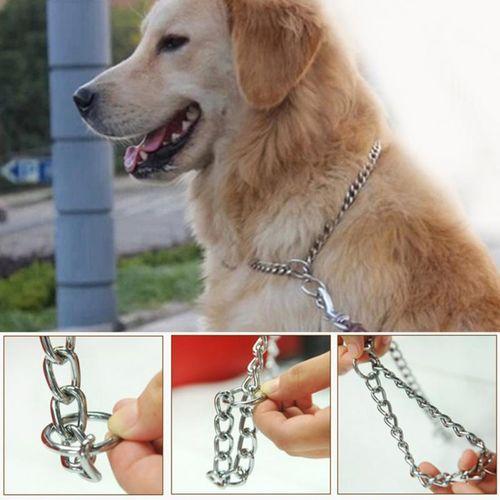 Laisse de chien - chaîne en métal de haute qualité