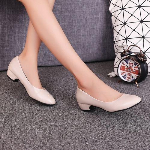 Autre Women Thick Heel Shallow Mouth Single Shoes -Matte Beige